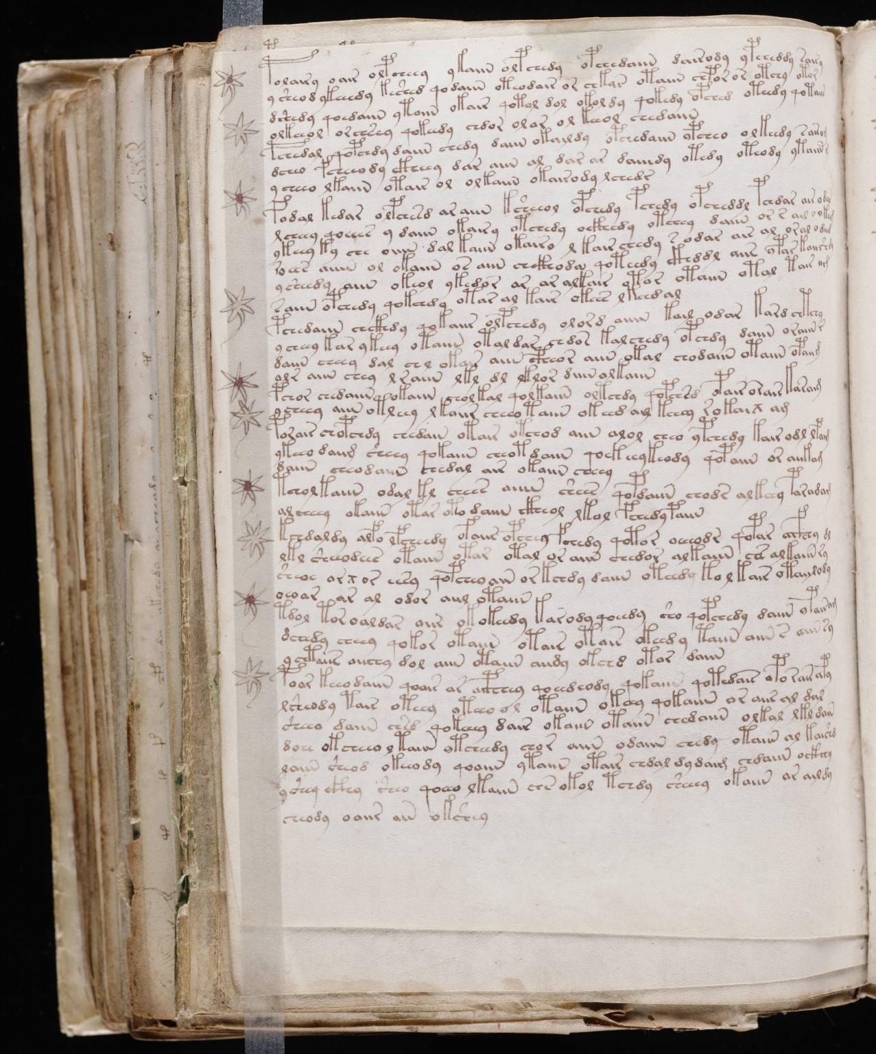 manuscrito186
