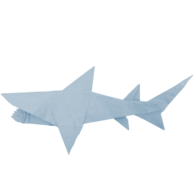 helicoprion-origami
