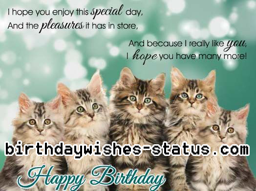 birthday wishes for cat lovers