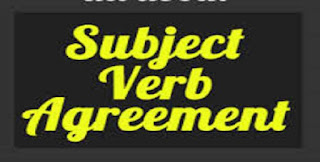 Subject Verb Agreement in Hindi