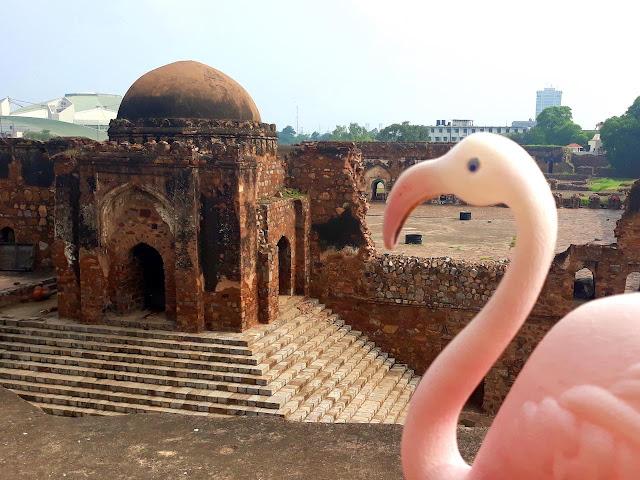 Travel toy at Feroz Shah Kotla Fort