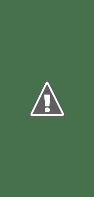 De là, vous pourrez voir tous les guides qu'un créateur a partagés, un peu comme le fonctionnement de l'onglet IGTV