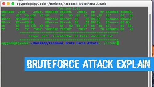كيفية اختراق حسابات فيسبوك بالتخمين  Facebook-BruteForce