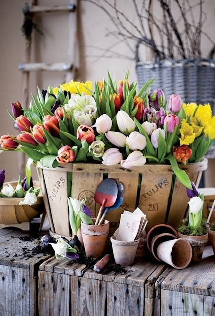 Floral Arrangements With Tulips 2