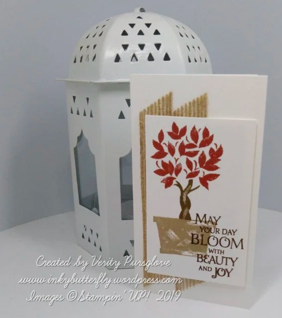 Nigezza Creates with Stampin' Up! and Inkybutterfly