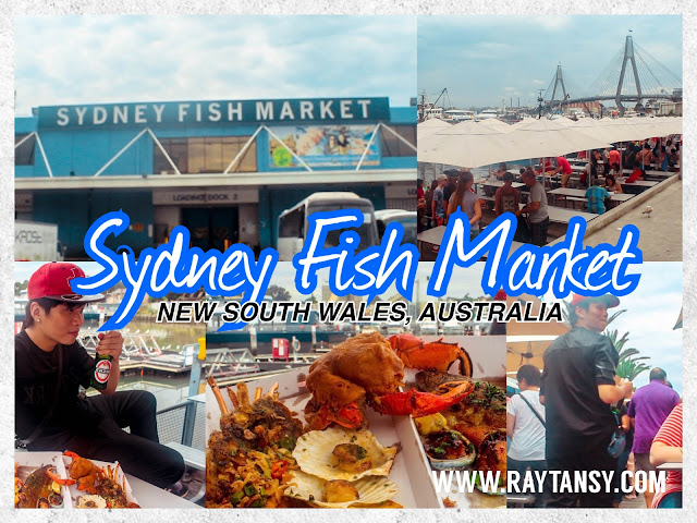 Ray Tan 陳學沿 (raytansy) ; Sydney Fish Market @ New South Wales, Australia 悉尼鱼市场 澳洲澳大利亞 新南威尔士州