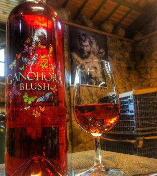 Kayra Leona Blush Rose Şarap Tadım Notları