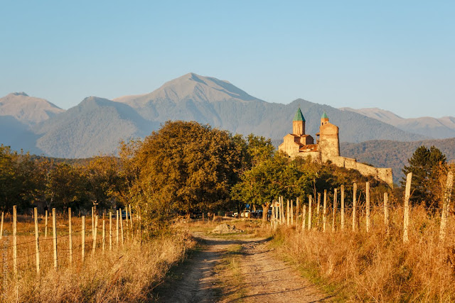 Крепость Греми и виноградники Алазанской долины