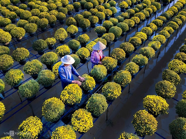 Vương quốc hoa xinh đẹp tại làng hoa