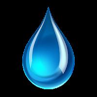 Suyun Organizmadaki Etkileri Nelerdir?