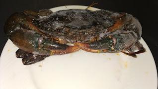 Crab in plate food recipe Healthy Dinner Recipe