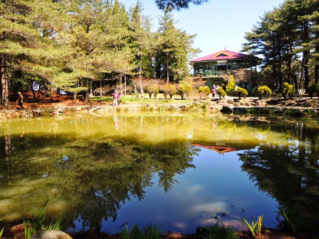 happywoman: 2014/04/08~10福壽山農場蘋果號知性之旅(十三)-天池