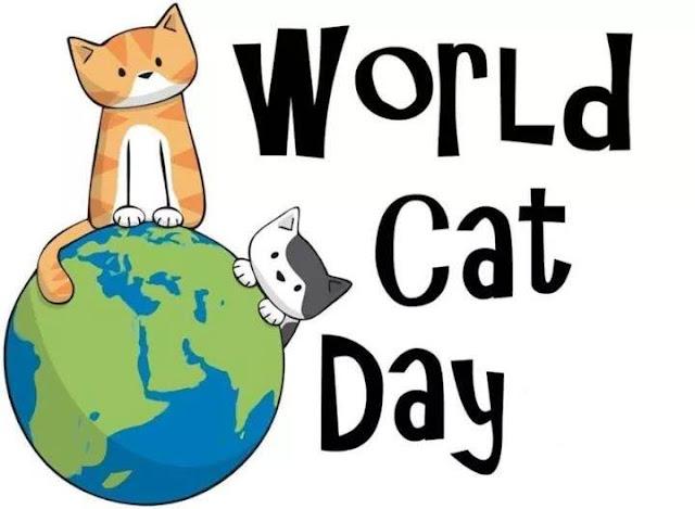 Selamat Hari Kucing Sedunia