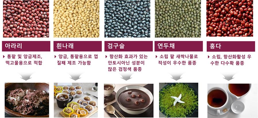 팥 'YV1-138', 항혈당 활성 10배 이상 뛰어나… 동물임상 확인