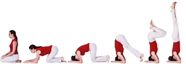 Yoga Posture Guide - The Head-stand (Sirsha-asana)