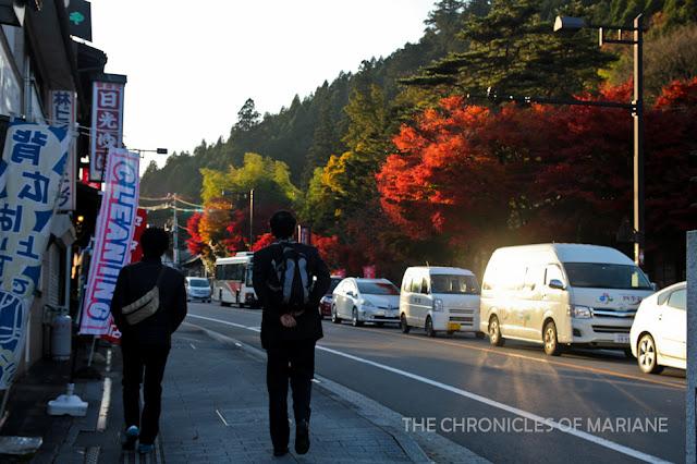 nikko traffic