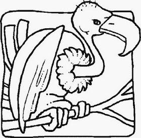 50 Desenhos De Aves Para Colorir Espaco Educar