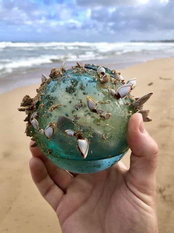 شاطئ في هاواي,الكرة الزجاجية,أغرب أشياء وجدت على الشواطئ,أغرب الاشياء