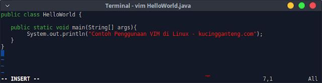 Cara Menggunakan Teks Editor VIM di Terminal Linux