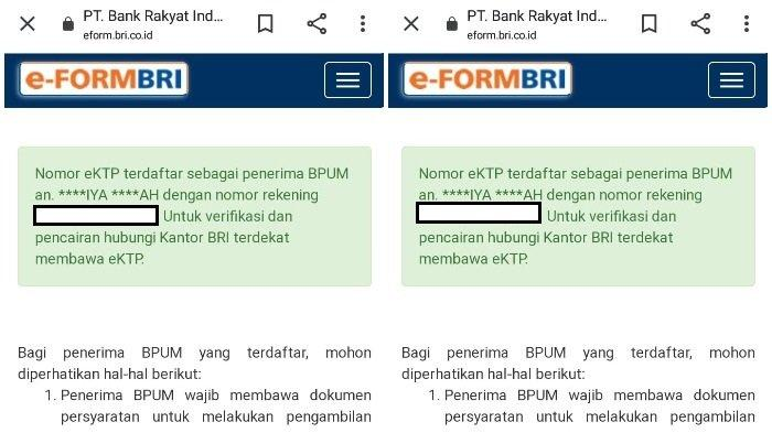 Tampilan hasil pencarian penerima BLT UMKM Rp 1,2 juta di eform.bri.co.id/bpum.  (tangkap layar eform.bri.co.id/bpum)