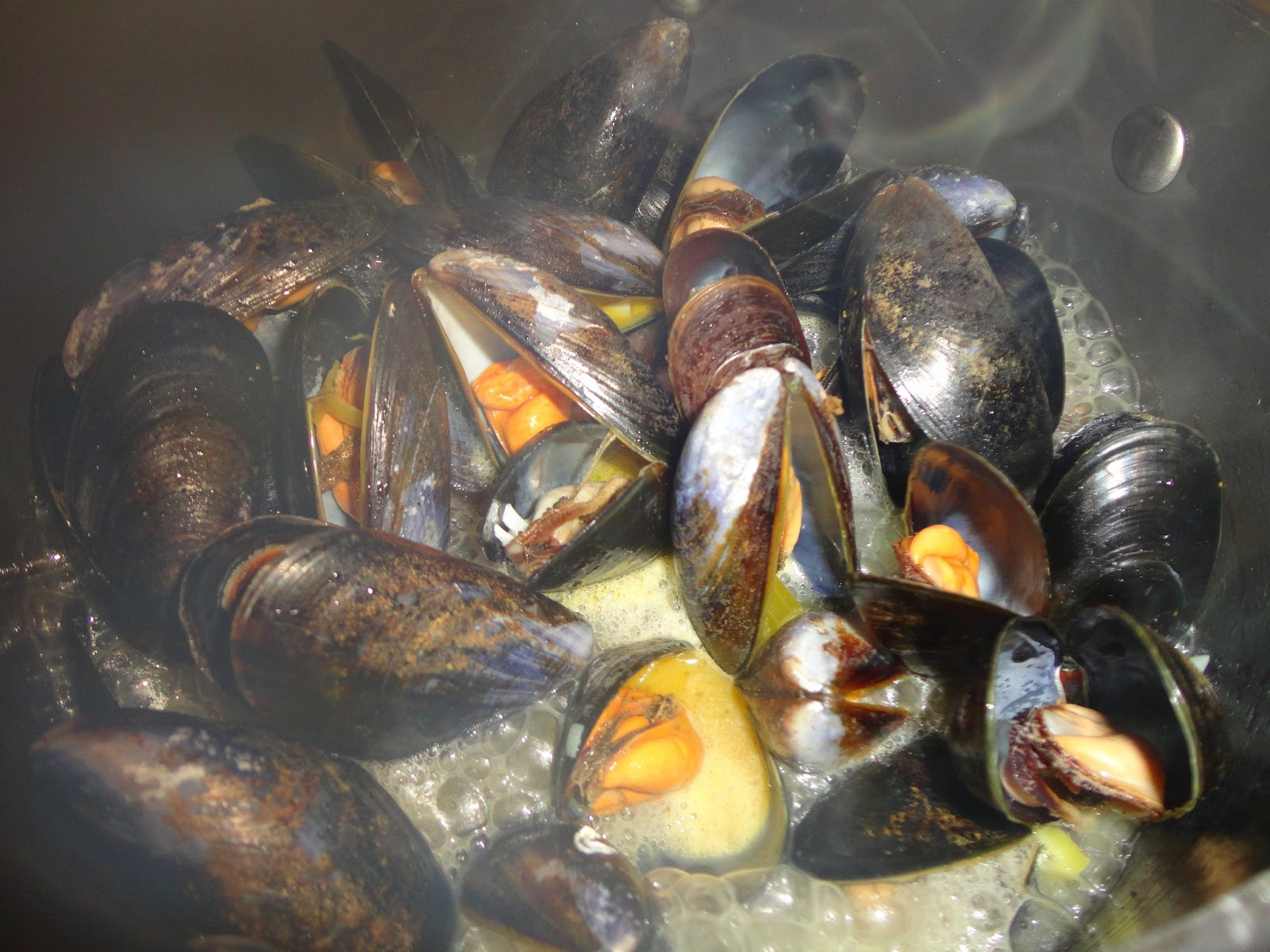 Lots and Lots of Mussels