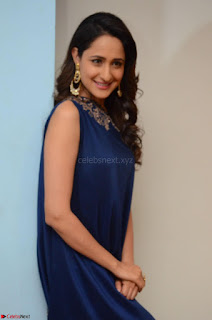 Pragya Jaiswal in beautiful Blue Gown Spicy Latest Pics February 2017 019.JPG