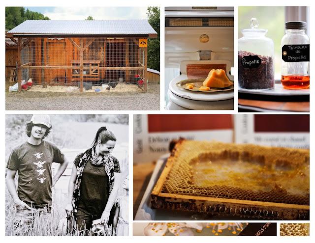 miel,ruche,quebecois,rayons,fermeneuve,mielsdanicet,photo,emmanuellericadblog, photo-emmanuellericardphoto,