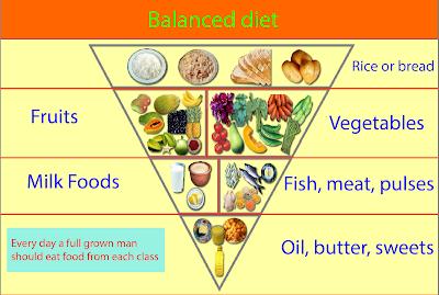 Balanced food pyramid