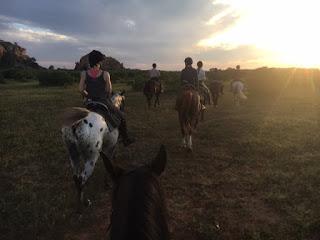 botswana, riitta reissaa, ratsastusmatka, savanni