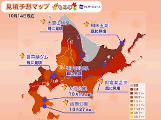 2020北海道紅葉預測