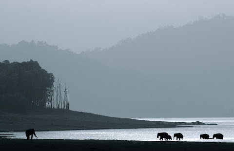 रामगंगा नदी