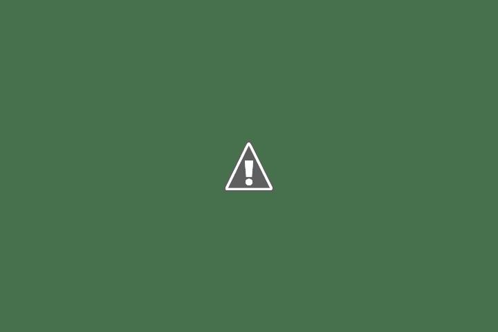 Masalah Pengindeksan Google Dan Cara Mengatasinya