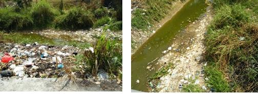 Kondisi sampah disekitar sungai.