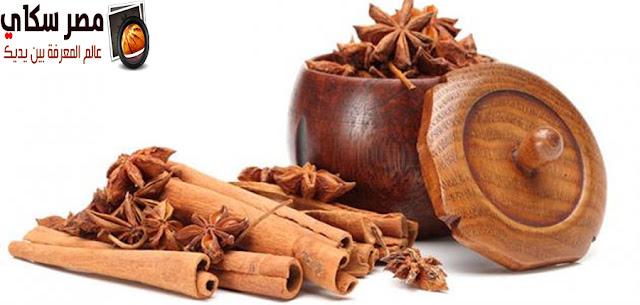 15 نبات آخر هام ومفيد لصحة ونعومة الشعر الجزء الثانى Useful plant for hair