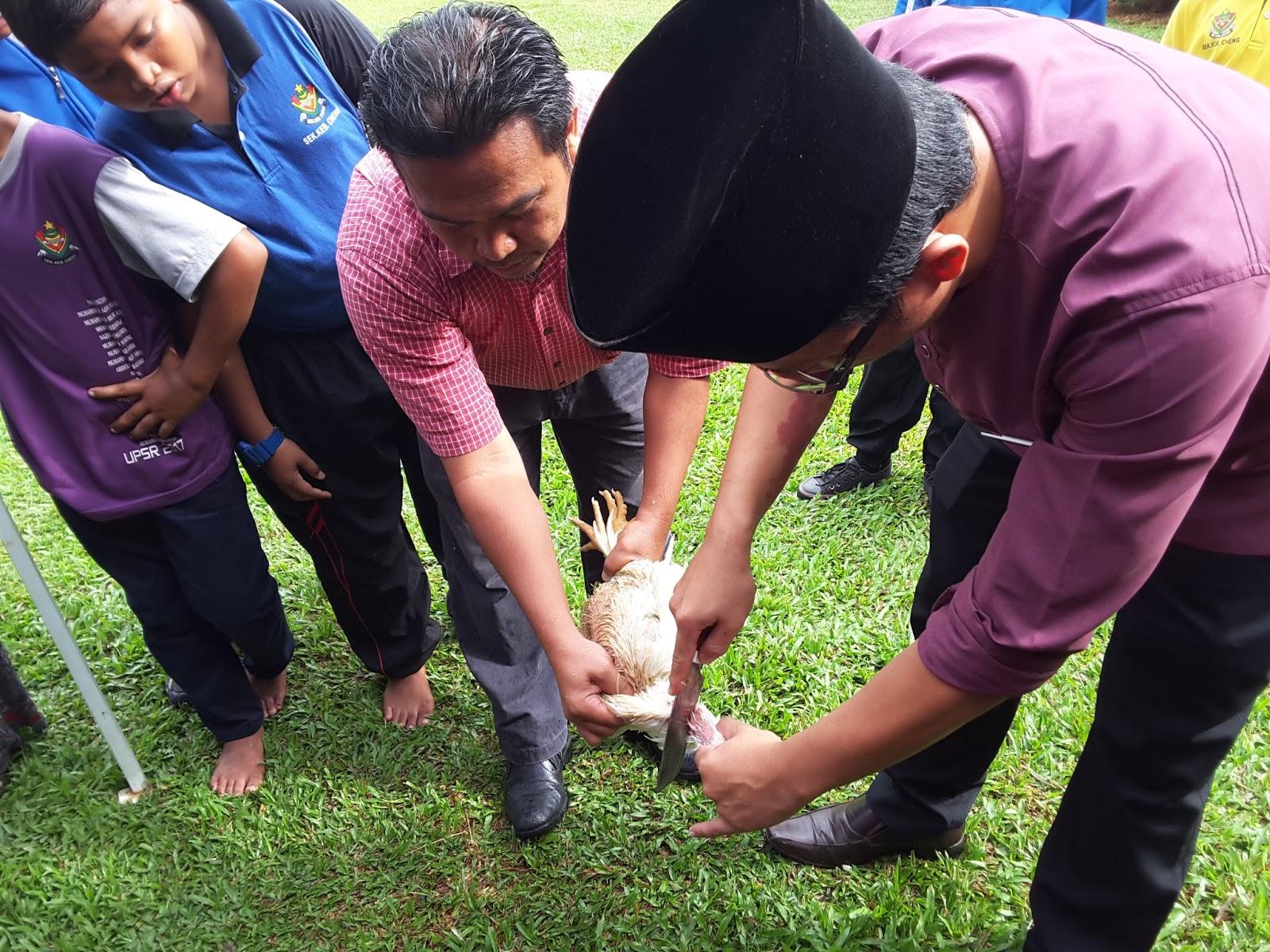 Kursus Penyembelihan Ayam - LAMAN RASMI SK CHENG MELAKA