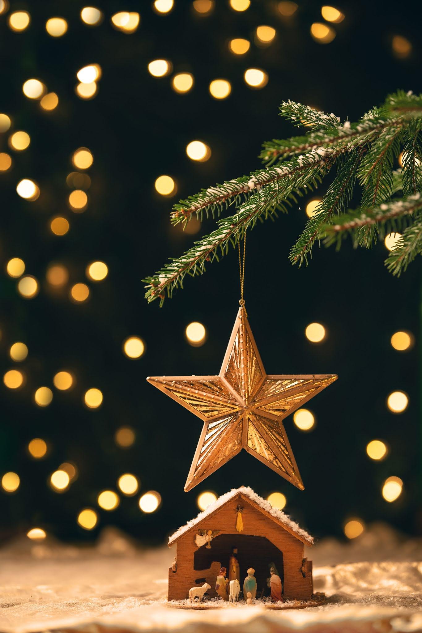 Christmas Start DP