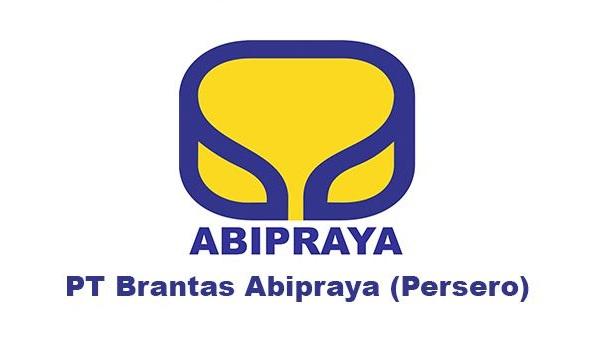 Rekrutmen Lowongan Kerja PT Brantas Abipraya (Persero) Besar Besaran, Lowongan kerja hingga 15 Desember 2016