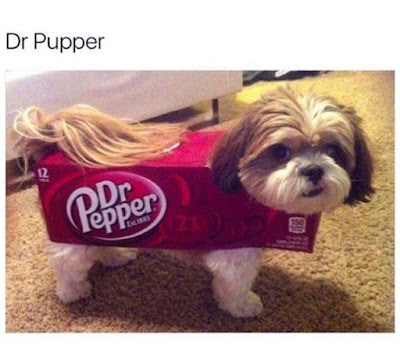 Funny Dr Pupper - dog dressed up as Dr Pepper