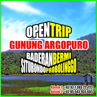 Open Trip Gunung Argopuro 2021 Via Baderan Situbondo - Bermi Probolinggo 5H4M