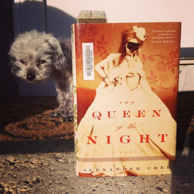 A fuzzy grey poodle, Murchie, peeks out from around a hardcover copy of The Queen of the Night set upright on a concrete stoop. The book's cover features a sepia portrait of a frizzy-haired white woman wearing a massive white gown and a black domino mask. She props one fist on her hip and raises her other hand to her lips.
