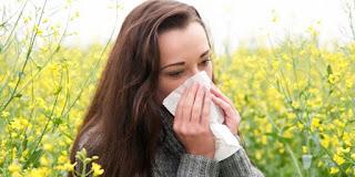 penyakit alergi