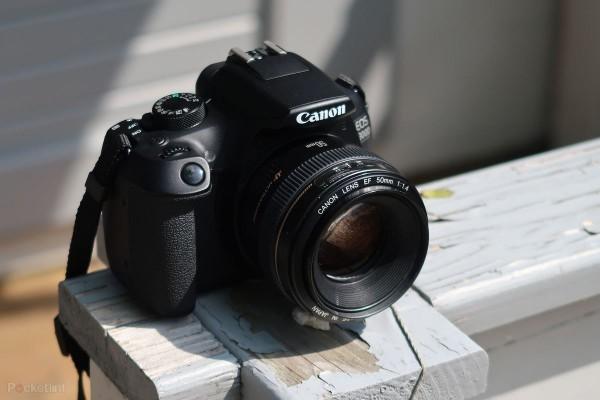 5 Kamera DSLR untuk Pemula
