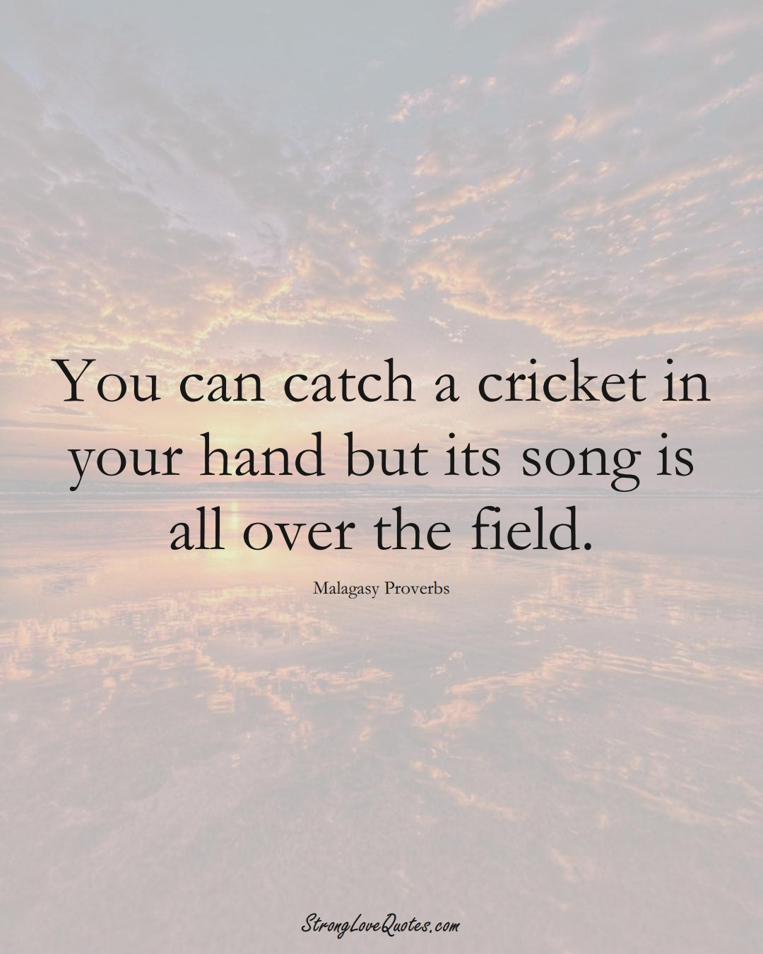 You can catch a cricket in your hand but its song is all over the field. (Malagasy Sayings);  #AfricanSayings