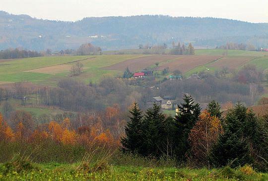 Malownicze wzniesienia Pogórza Rożnowskiego.