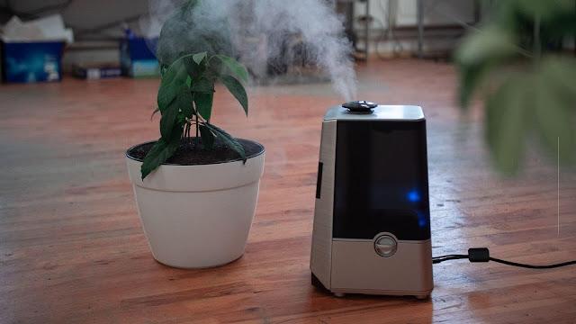 5 Tips Memilih Pembersih Udara yang Tepat untuk Kantor Rumah Kita