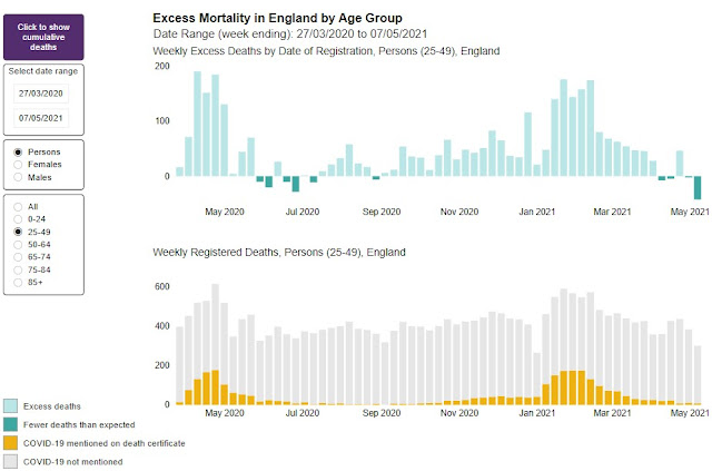 Excess mortality England May 2020 to present 200521 age 24 to 49