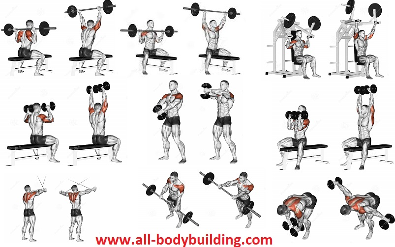 Shoulders Workout - Put Cannonballs on Your Sides With