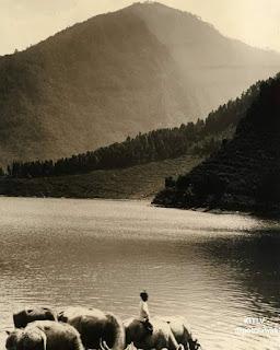 Telaga Sarangan di kaki gunung Lawoe, Magetan. Sekitar tahun 1933-1935