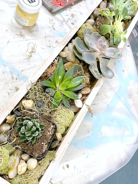 How to Make a Rustic Stenciled Succulent Garden Gift