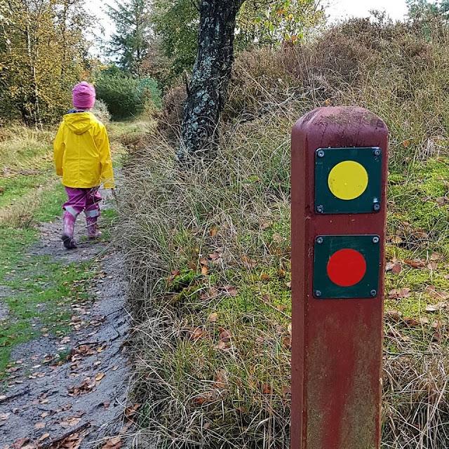 Urlaub auf Fanø mit Kindern: 3 weitere Ausflüge für Familien. Eine Wanderung bzw. ein Spaziergang vom Annesdal Bjerg aus ist wunderschön.